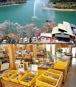 物産館「水の上の市場」